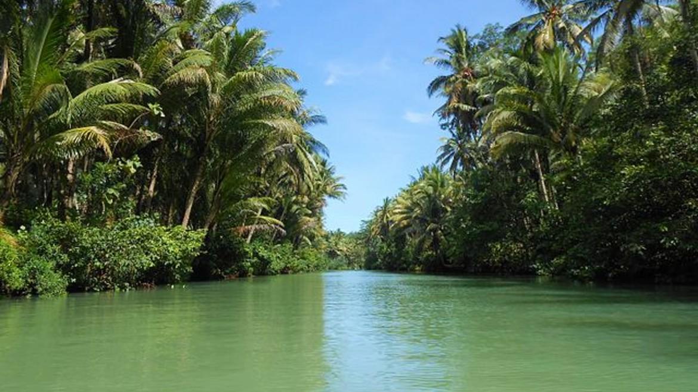 Amazonios-potami-wikimedia-commons