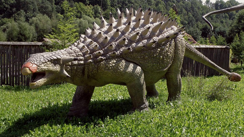 agkylosavros - deinosavros - agylosavros - photo by wikimedia commons --